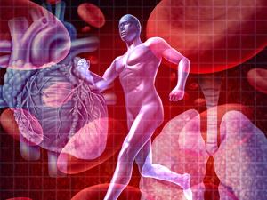 Kesehatan Prima Berawal dari Jantung yang Sehat
